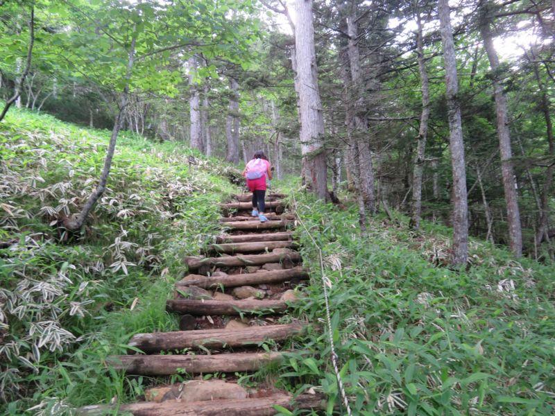 四合目までの階段