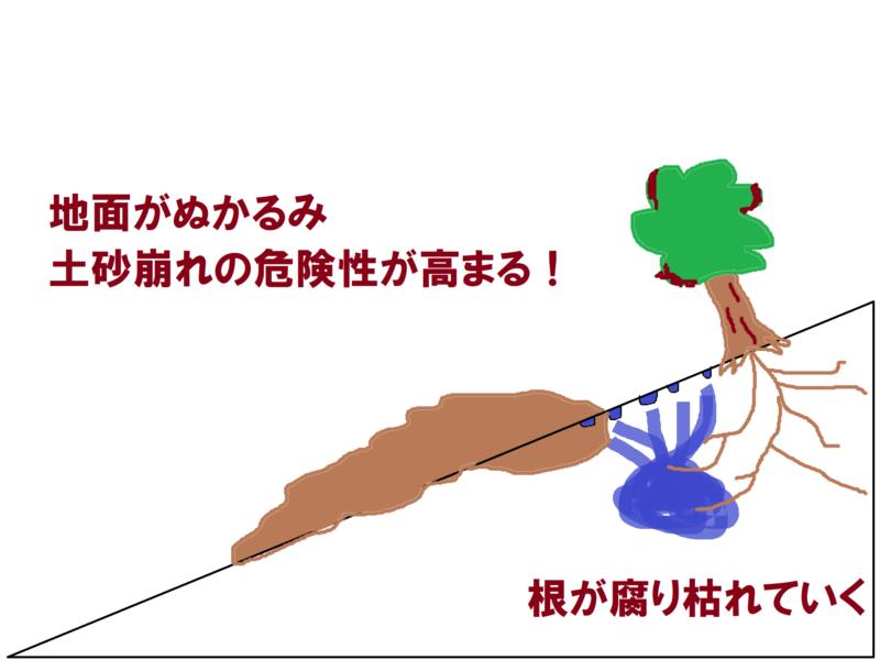 生態系の破壊
